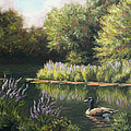 The Pond by Lucie Bilodeau