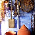 The Potting Shed by Deborah Meyler