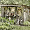 The Potting Shed by Heather Applegate