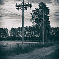 The Power Lines  by Howard Salmon