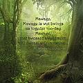 The Princess Bride - Mawage by Paulette B Wright