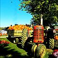The Pumpkins Have Arrived by Kathy Barney