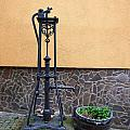 The Pump At St Goar Am Rhein by Jouko Lehto