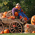 The Pumpkin Farmer by Hugh Carino