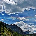 The Rare Phenomena Rainbows by Janice Rae Pariza