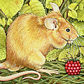 The Raspberry Mouse by Ditz