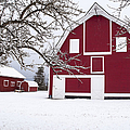 The Red Barn by Fran Riley