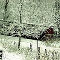 The Red Barn by Mimi Saint DAgneaux