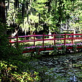 The Red Bridge by Christiane Schulze Art And Photography