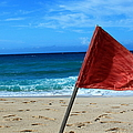 The Red Flag by Catie Canetti