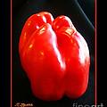 The Red Pepper by Joseph J Stevens