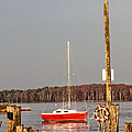 The Red Sailboat by Bill Cannon