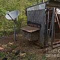 The Redneck Chicken Coop by Donna Brown