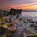 The Reef by Debra and Dave Vanderlaan