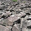 The Ringing Rocks Of Bucks County by Susan Carella