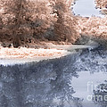 The River - Near Infrared by Scott Hervieux
