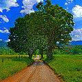 The Road  by David Lee Thompson