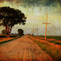The Road Home by Julie Hamilton