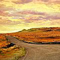 The Road Less Trraveled Sunset by Marty Koch