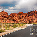 The Road To The Valley Of Fire by Jane Rix