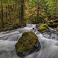 The Rock At Panther Creek by David Gn