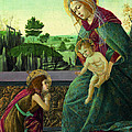 The Rockefeller Madonna. Madonna And Child With Young Saint John The Baptist by Sandro Botticelli