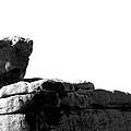 The Rocks Of Contrast by Carolina Liechtenstein