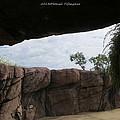 The Rocky Angle by Sonali Gangane