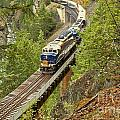 The Rocky Mountaineer Above The Cheakamus River by Adam Jewell