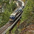 The Rocky Mountaineer by Adam Jewell