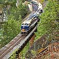 The Rocky Mountaineer Railroad by Adam Jewell
