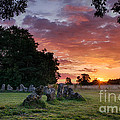 The Rollright Stones Sunrise by Tim Gainey