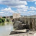 The Roman Bridge Of Cordoba  by Andrea Mazzocchetti