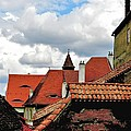 The Roofs Of Sibiu In Transylvania by Ion vincent DAnu