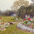 The Rose Garden by Thomas James Lloyd