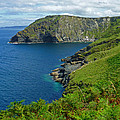 The Rugged Green Shore by Connie Handscomb