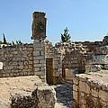 The Ruins by Munir Alawi