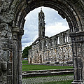 The Ruins Of St Andrews Cathedral by RicardMN Photography