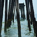 The Ruins Of The 59th Street Pier  by Bill Cannon