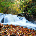 The Rushing Waterfall by Crystal Wightman