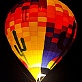 The Saguaro Balloon  by Saija  Lehtonen
