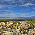 The Salton Sea by Tommy Anderson