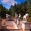 The Satutues Of Archangelskoe Palace. Russia by Jenny Rainbow