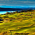 The Scenic Chambers Bay Golf Course - Location Of The 2015 U.s. Open Tournament by David Patterson