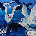 The Seagulls by Mona Edulesco