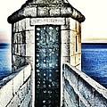 The Secret Door by Marianna Mills