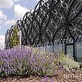 The Secret Garden 2 by John Chatterley