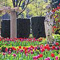 The Secret Garden Of The Goddess by Eti Reid