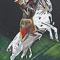 The Seminole by Steven Dopka