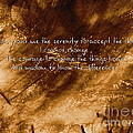 The Serenity Prayer 1 by Andrea Anderegg